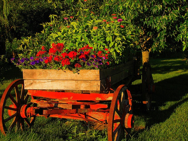 Wagon full of flowers (1) From: FlickR, please visit