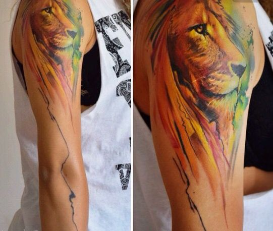 Lovely lion colours and expression