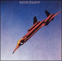 budgie band - Google Search