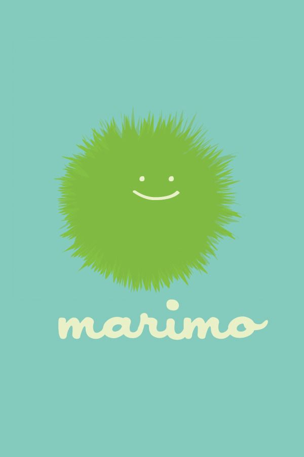 happy marimos // a blog about marimo care                                                                                                                                                                                 More