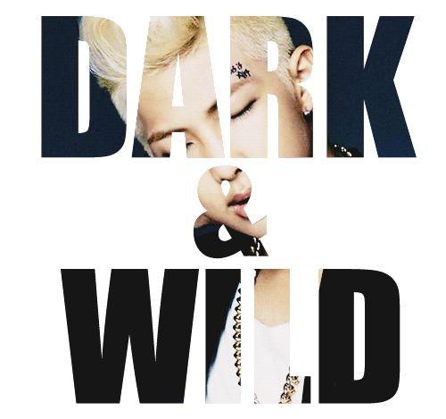 Dark and Wild • #BTS ♡