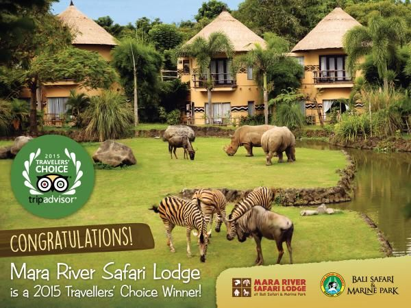 Congratulations! Mara River Safari Lodge @BaliSafari to have awarded TripAdvisor's Travellers` Choice Award 2015.