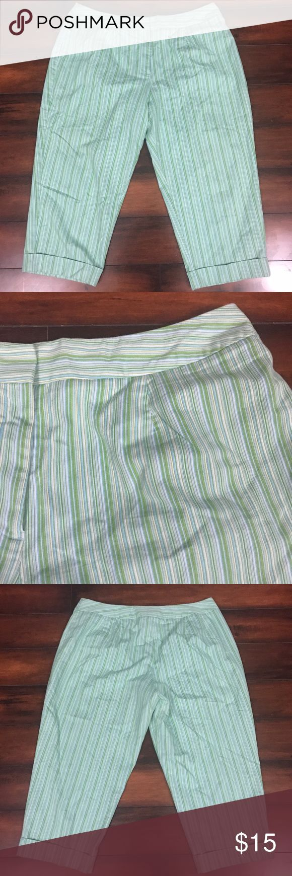 "Studio Works Woman Capri Pants Size 20W Women's plus size 20W green/blue striped Studio Works Woman cropped pants/capris. 71% cotton, 27% polyester, 2% spandex.   Measurements:  Inseam: 22"" Length: 32"" Pants Ankle & Cropped"