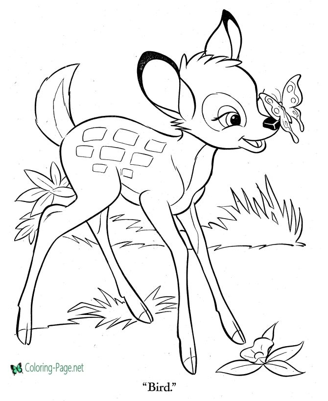 Printable Bambi Coloring Pages Owl Coloring Pages Coloring Pages Cartoon Coloring Pages