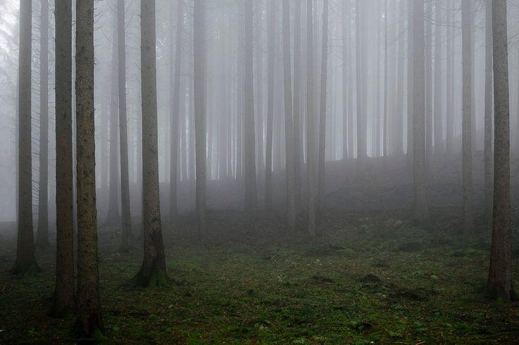 mystic mist 1