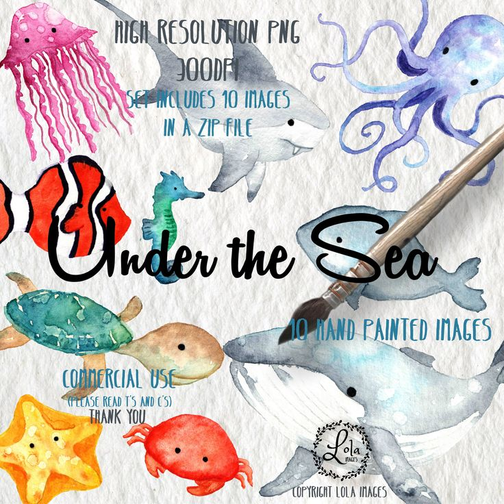 Excited to share the latest addition to my #etsy shop: Under the Sea Digital Clipart | Ocean Underwater | Instant Download | Hand Painted Watercolor | Personal & Commercial Use | PNG Images https://etsy.me/2G9opgp #supplies #green #cardmakingstationery #gold #watercolo