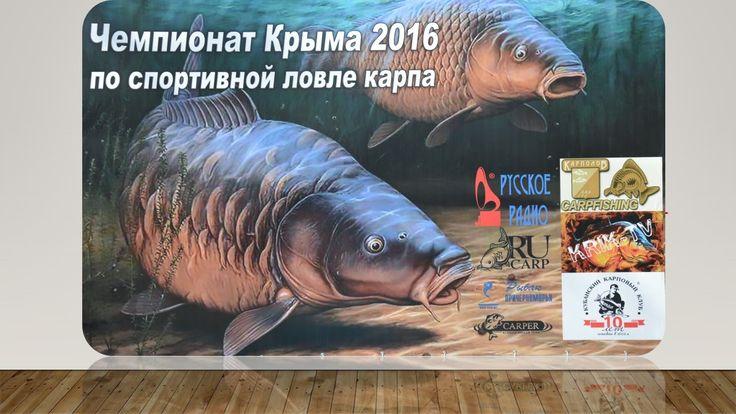 Чемпионат Крыма 2016 Карпфишинг (Ловля Карпа)