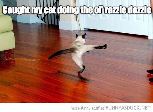 The Ol' Razzle Dazzle