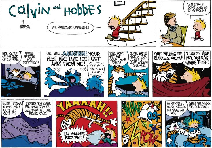 Calvin and Hobbes by Bill Watterson for Mar 4 2018