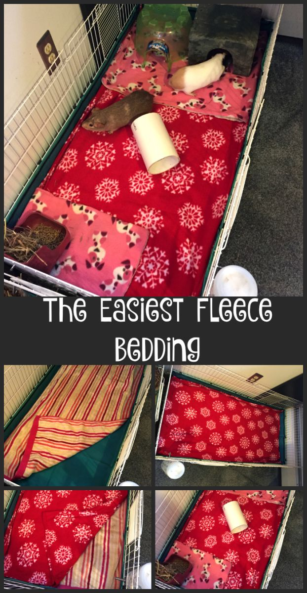 This is the easiest way to do fleece bedding for guinea pigs, rabbits, and other small animals. Over the years I've done all kinds of different things for bedding in my habitats. Yes, I call …