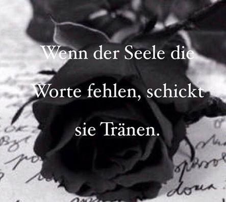 wenn der Seele die Worte fehlen, schickt sie Tränen...