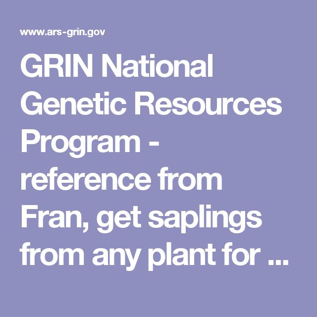 GRIN National Genetic Resources Program - reference from Fran, get saplings from any plant for free FED-EXd to you, or go in person and pick them up