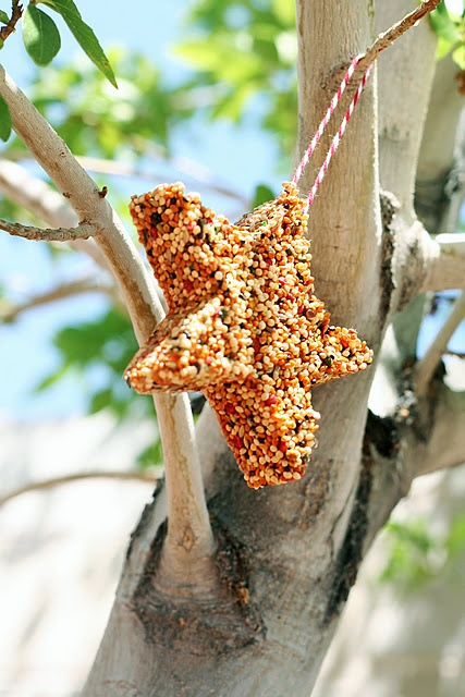 Easy project - make bird feeder stars to hang from backyard trees. We have all of the stuff to do this right now!