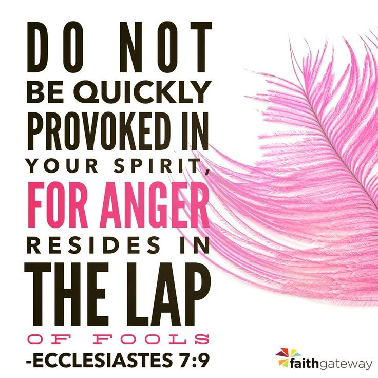 "Be not hasty in thy spirit to be angry: for anger resteth in the bosom of fools."" Ecclesiastes 7:9 KJV"