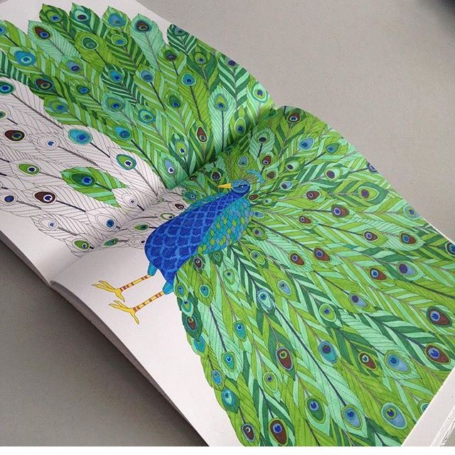 Adult Coloring Colouring Books Zentangle Lettering Peacocks Tropical Wonderland Therapy