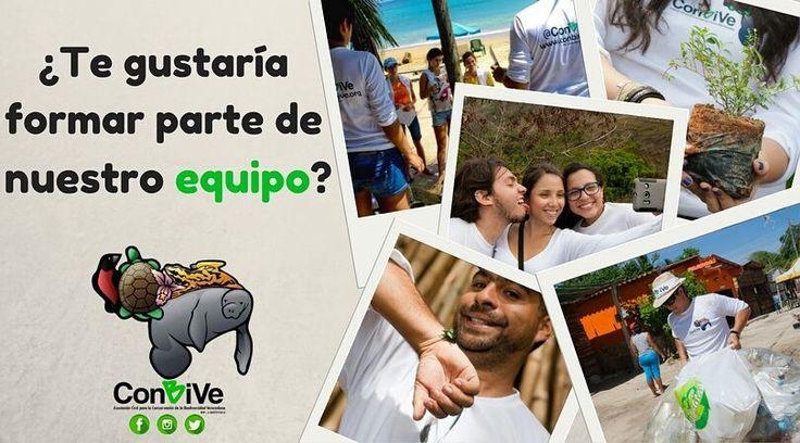 Ahora sí ya iniciamos formalmente el proceso de selección de nuevos miembros de @ConBiVe y eso nos tiene muy contentos.  Si te interesan los temas ambientales y quieres realizar aportes a la conservación de la fauna flora y áreas naturales de nuestro país ahora podrás incorporarte a las actividades que realizamos y proponer acciones a favor del desarrollo sustentable de Venezuela.  Hemos afinado los detalles para desarrollar una serie de talleres modulares que inician la próxima semana. La…