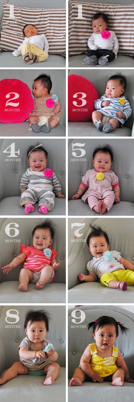 Cutest baby pictures courtesy of @Joy Cho / Oh Joy!: Cutest Baby, Joy For, Baby Ideas, Baby Pictures, Baby Girls, Asian Baby, Months Pictures, Baby Photos, Pictures Courtesi