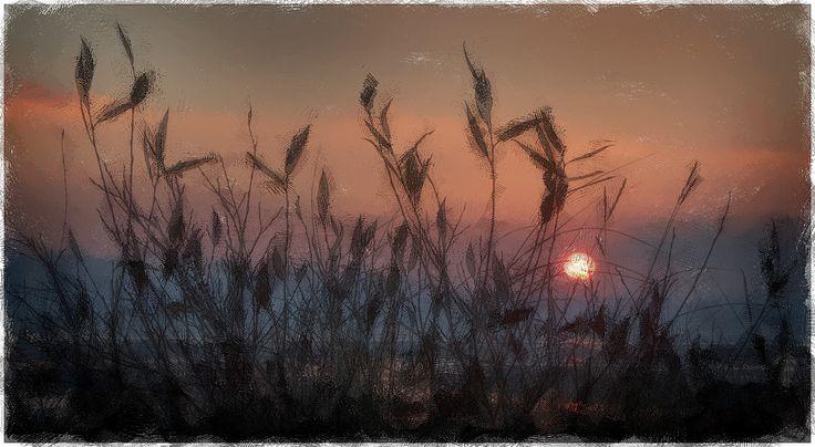 Amazing Donuted sunrise - by John Pile