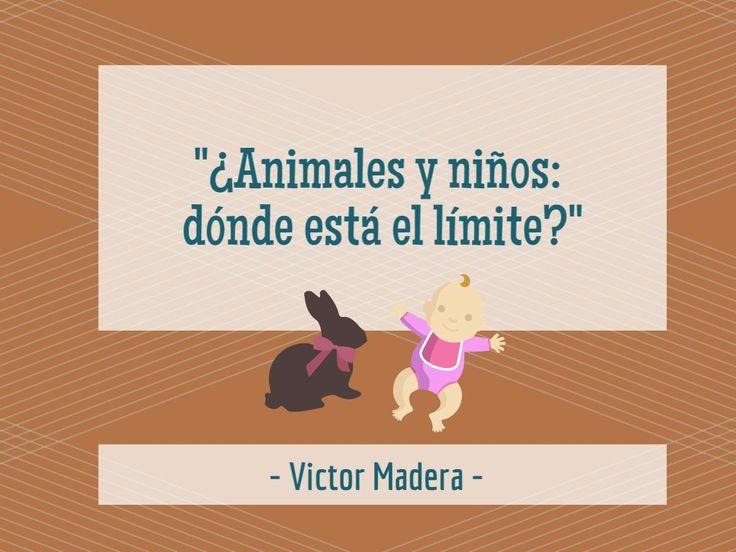 ¿Todavía no han leído mi nueva entrada en el blog Victor Madera Vet? Hoy les hablo sobre la convivencia entre niños y animales en un mismo hogar