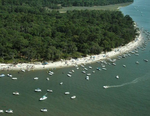 St Catherines Island Ga Real Estate