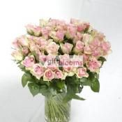 Estonia classic flowers and roses delivery,Browse giftblooms.com for classic flowers delivery anywhere in Estonia.