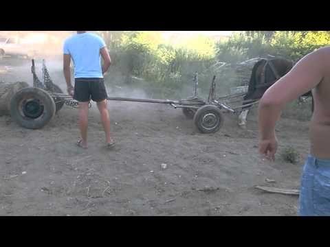 probe cai priboieni - YouTube