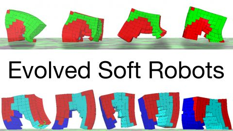 Evolving Soft Robots -- Here we evolve the bodies of soft robots made of multiple materials (muscle, bone, & support tissue) to move quickly. Evolution produces a diverse array of fun, wacky, interesting, but ultimately functional soft robots. Enjoy!