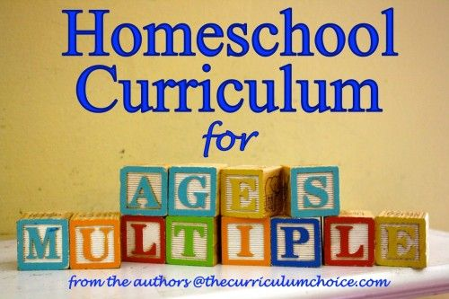 "Choosing Homeschool Curriculum for Multiple Ages //  I absolutely LOVE this post! So many links that will help with curriculum decision making. This will be one of the ""GO TO"" posts whenever a friend says, ""We're considering homeschooling our children, can you help me?"""