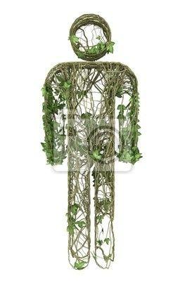 Stickers botany, ornate, botanical - klimop natuur mannelijke pictogram ✓ Brede keuze van materialen ✓ Het product aan je behoeften aangepast ✓ Bekijk de opinies van onze klanten!