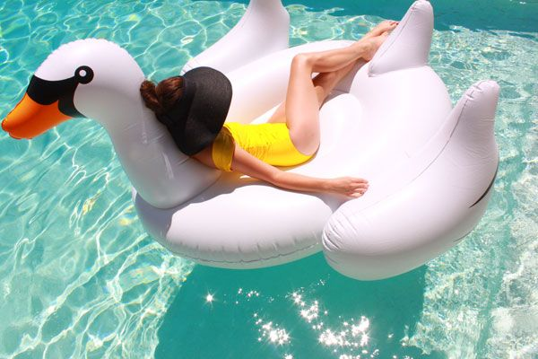 slim aarons inspired swan photo by kellygolightly. so cute! #splendidsummer #fun #design