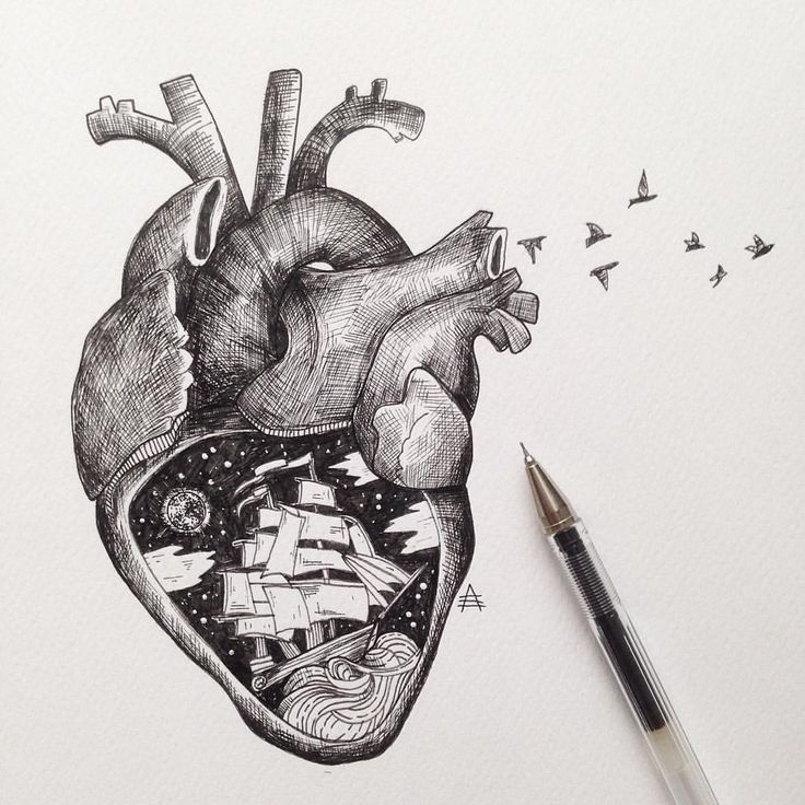 32 best heart images on pinterest | drawings, my heart and drawing, Muscles