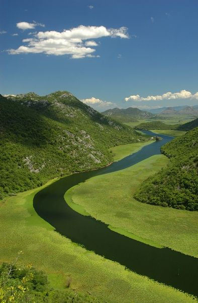 """""""Skadar Lake National Park is the largest lake in the Balkans, home to a vast number of bird species including the Dalmatian pelican."""" Montenegro: the Bradt Guide; www.bradtguides.com"""