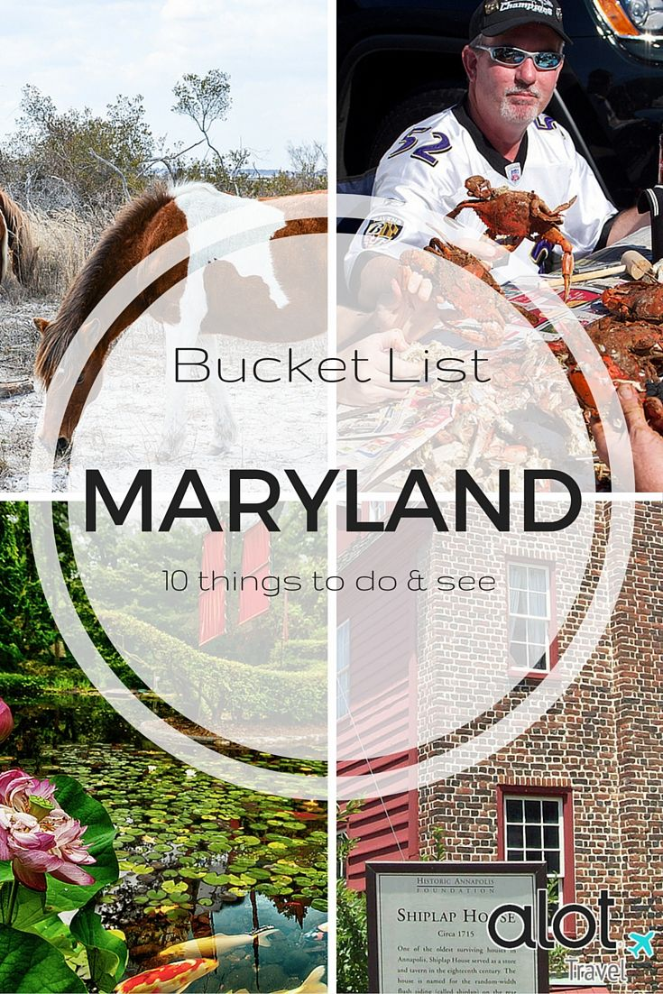 Maryland is a must for anyone who loves seafood, beaches, or hearing about how our country came roaring into existence. Here's our list of 10 things to do when visiting Maryland.