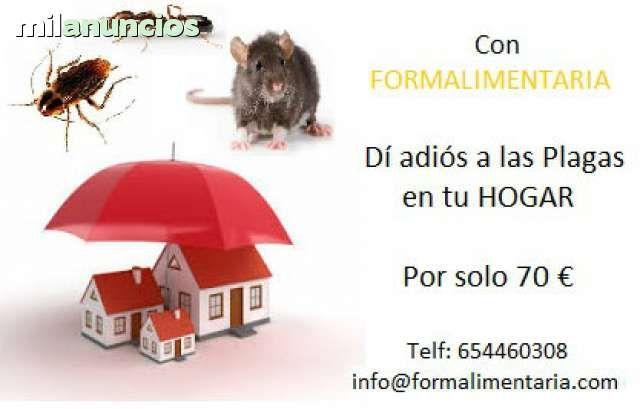 Promoción válida para Alicante, Elche, Crevillente, Santa Pola, Arenales del Sol, La Marina, Guardamar, La Mata, Caudete, Villena