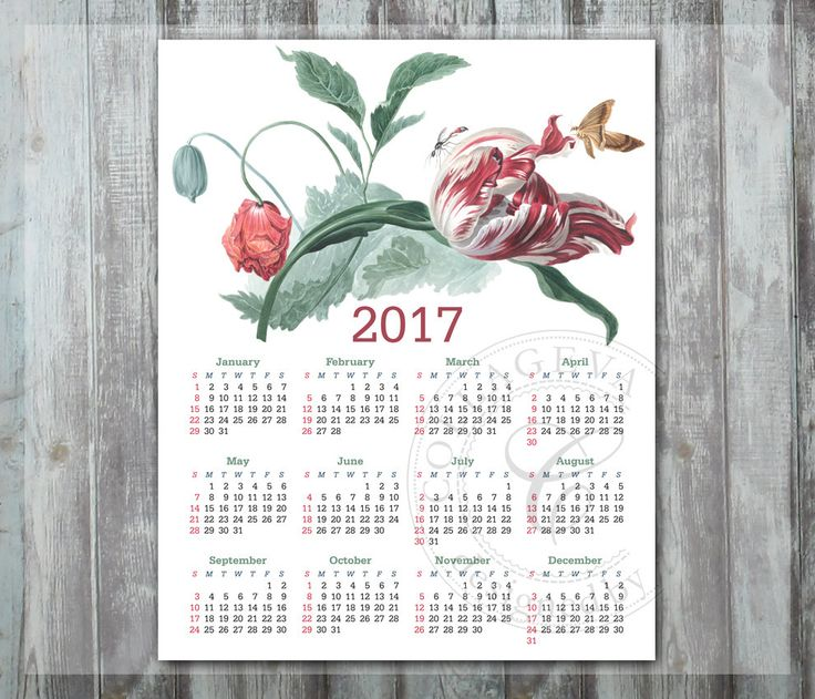 2017 PDF Calendar 8x10 inch Digital Year Calendar, Printable Wall art, Watercolor painting Flowers Red Poppy Tulip Butterfly jpeg (C007-17) by collageva on Etsy