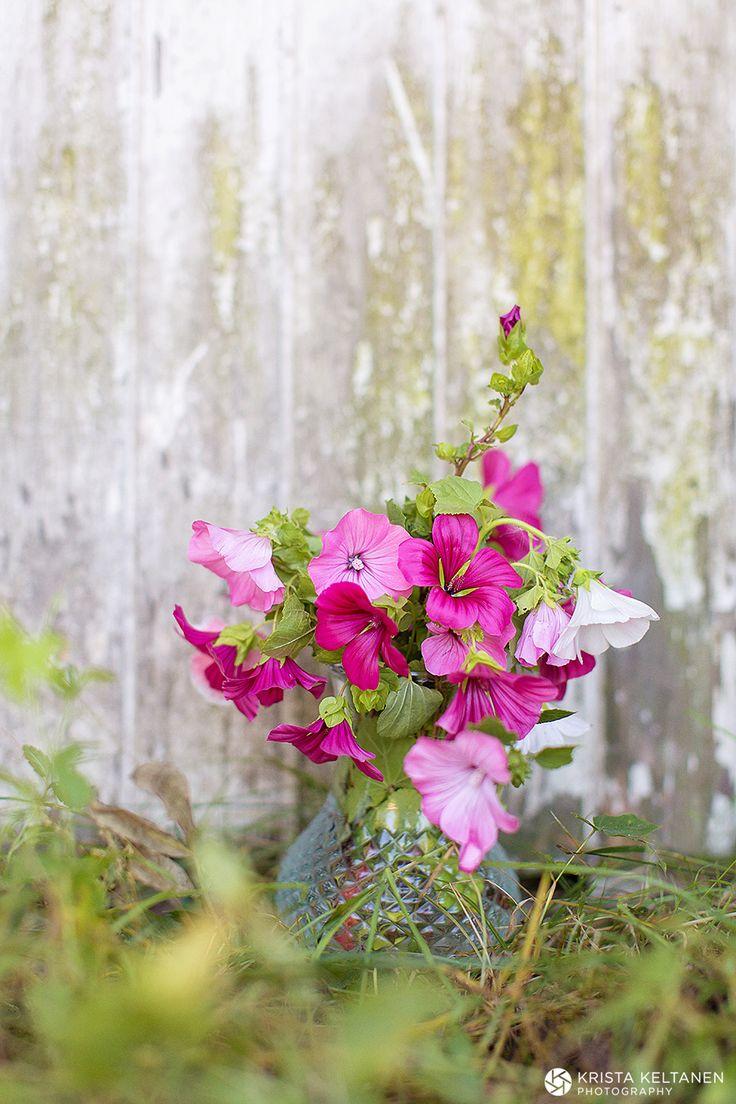 Kukkia ja juhlia » Krista Keltanen Blog