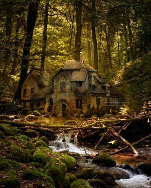 Old Mill, Black Forest, Germany. This picture takes my breath away.