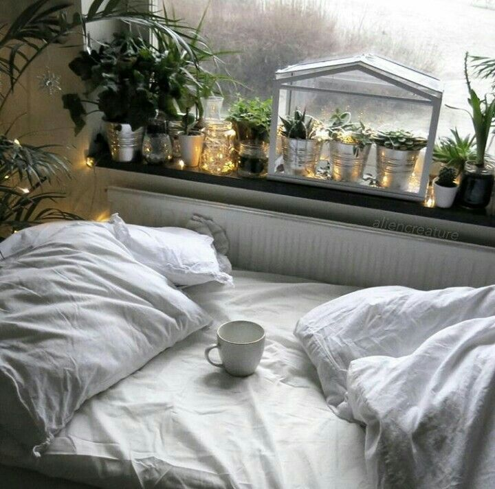 Love the plants on the window sill. 13 best plants images on Pinterest   Bedroom plants  Dorm plants