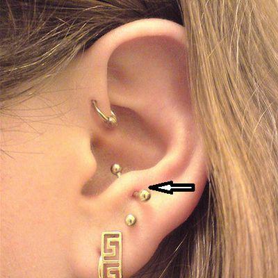 Fotos de tipos de piercings en el cartílago de la oreja: Piercing antitragus