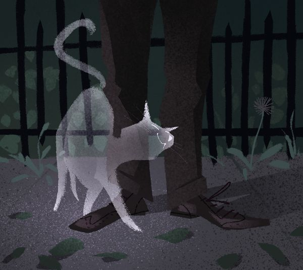 """valerie-rustad: """" drawlloween #1: ghost cat wants to get your pants hairy, even in the afterlife """""""