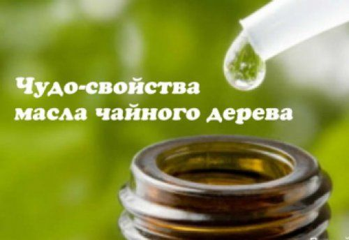 Масло чайного дерева: как правильно использовать?Держите флакончик с маслом чайного дерева не только в аптечке, но и среди косметики. Оно поможет избавиться от массы проблем.1. Для красоты.- Избавляет…