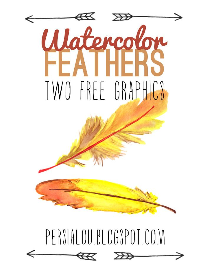 Free Watercolor Feather Graphics - Persia Lou
