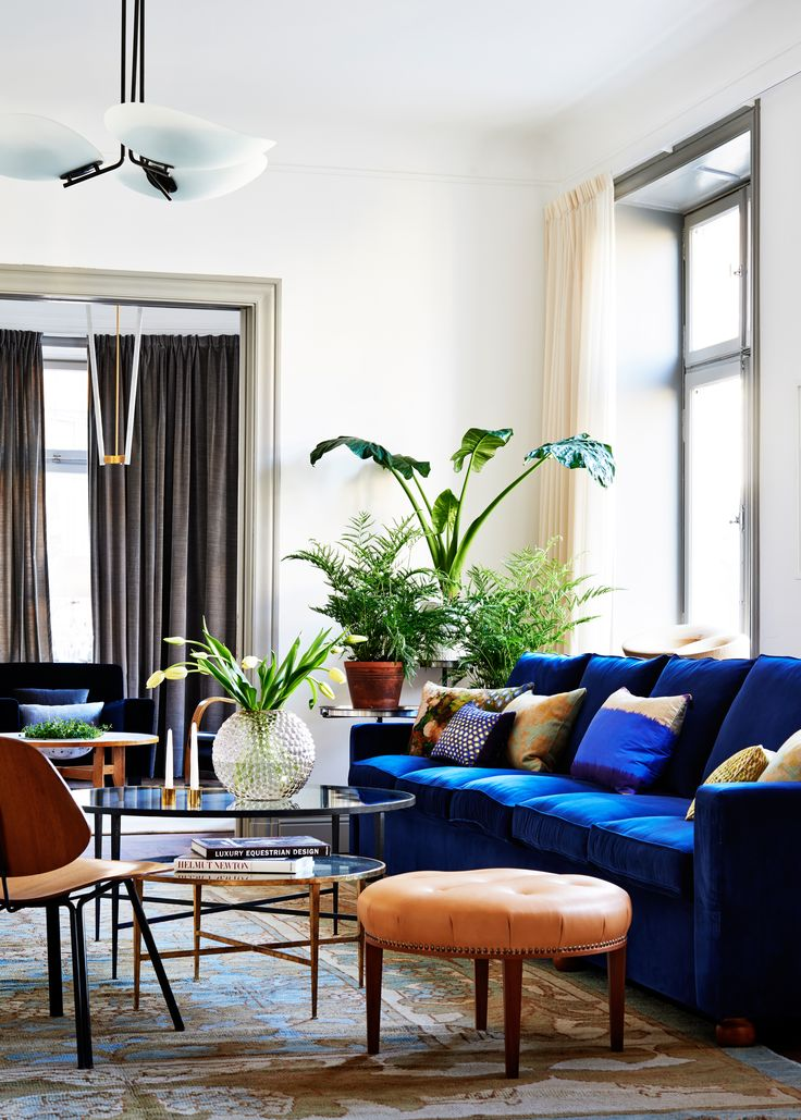 blue sofa living room