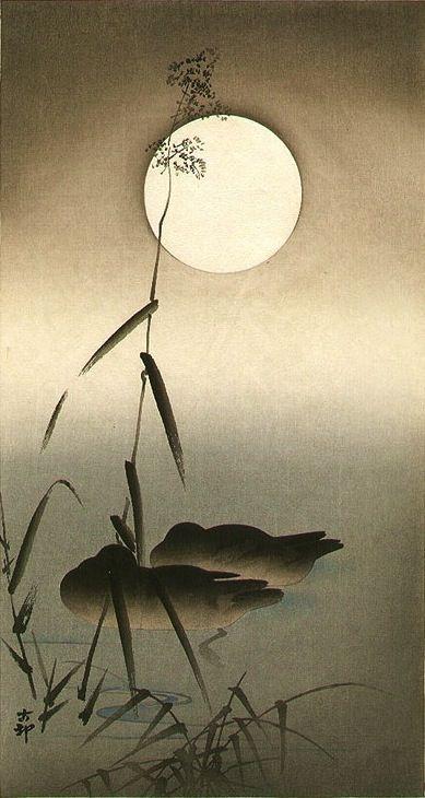 Sleeping Ducks - Ohara Koson (1877-1945) (moon) Japan.
