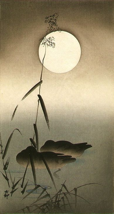 Sleeping Ducks - Ohara Koson (1877-1945) (moon) Japan.