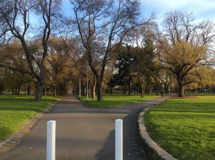 Archibald Victor Martin Steane was murdered by Percy Finch on the 1st of January 1911 at this location in the Edinburgh Gardens in North Fitzroy.  #twistedhistory #melbournemurdertours #tours #melboure #truecrime