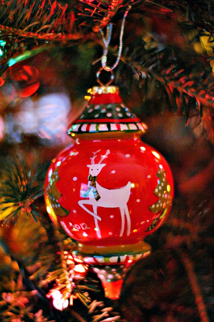 It Is The First Time This Was On Our Christmas Tree I Bought These At Pier  One Import At The End Of These Ornaments Are Hand Painted From