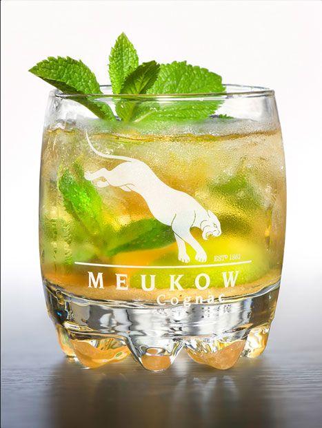Meukow MOJIGNAC