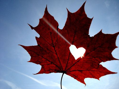 Today more than ever I was a proud Canadian! We are so true to our beliefs! :-)