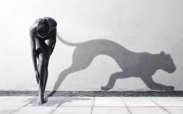 """""""Non devi dimostrare paura, esprimigli affetto. Se tu manifesti paura, l'animale percepirà che sei suo nemico e cercherà di distruggerti; ma se gli offri tenerezza e hai fiducia in lui, a poco a poco si calmerà""""  La Donna dalla coda d'argento"""
